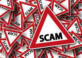 scam shitcoins
